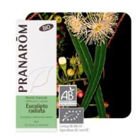 Pranarom Aceite Esencial Eucalipto Radiata Bio | Farmaconfianza | Farmacia Online