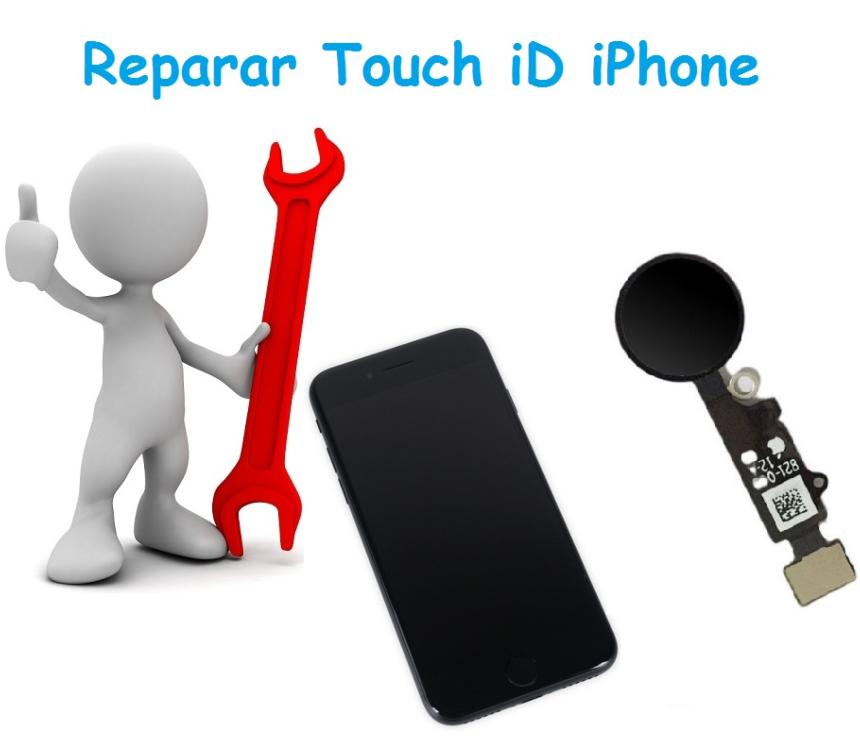 Reparar Touch iD iPhone 7 / 7+ / 8 / 8+