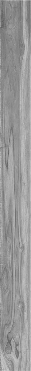Alaplana Liebe Gris 22x208 | Deck-Trade