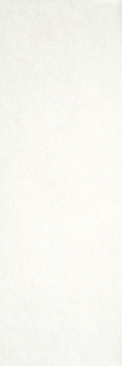 Durstone Indiga White 40X120 White Body
