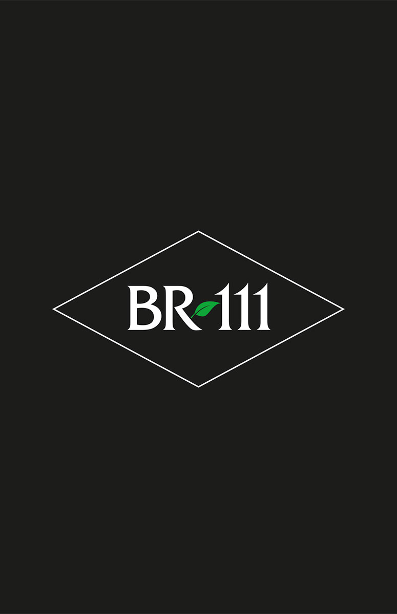Catalogo Parquet BR111