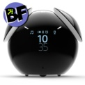 Alto falantes Sony BSP60 Preto