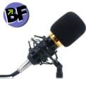 Micrófono Estudio BT-800 - Ítem