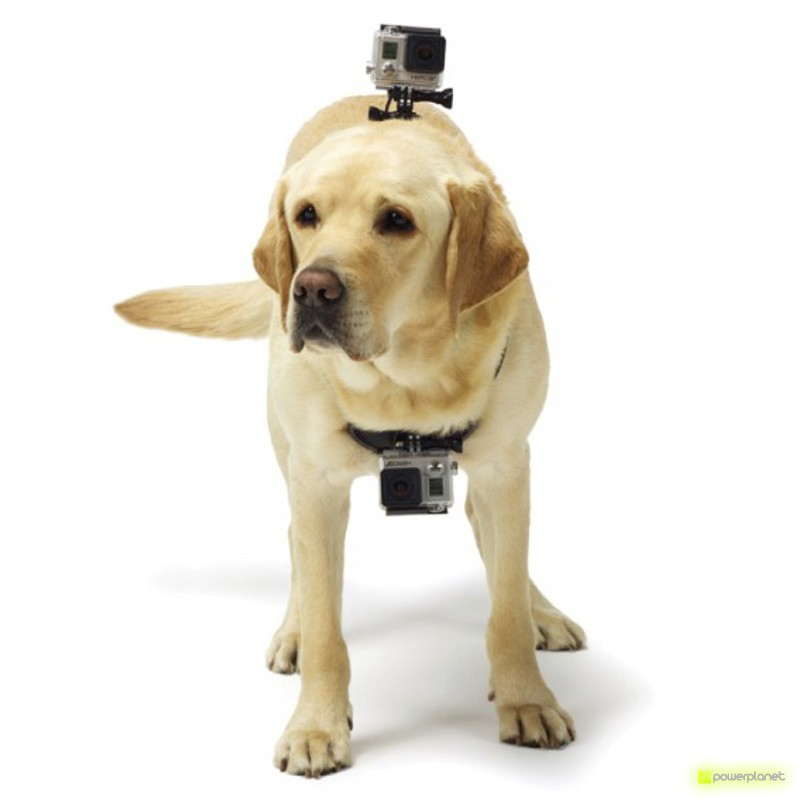 comprar barato harness camera, harness camera para colocar o seu animal, harness gopro, harness sj4000, harness para colocar o seu animal