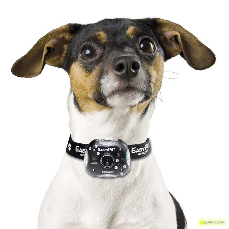 comprar cámara - Ítem3