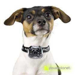 comprar câmera perros y gatos - Item3