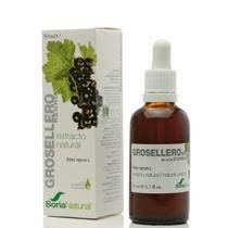 Grosellero Negro Extracto 50ml