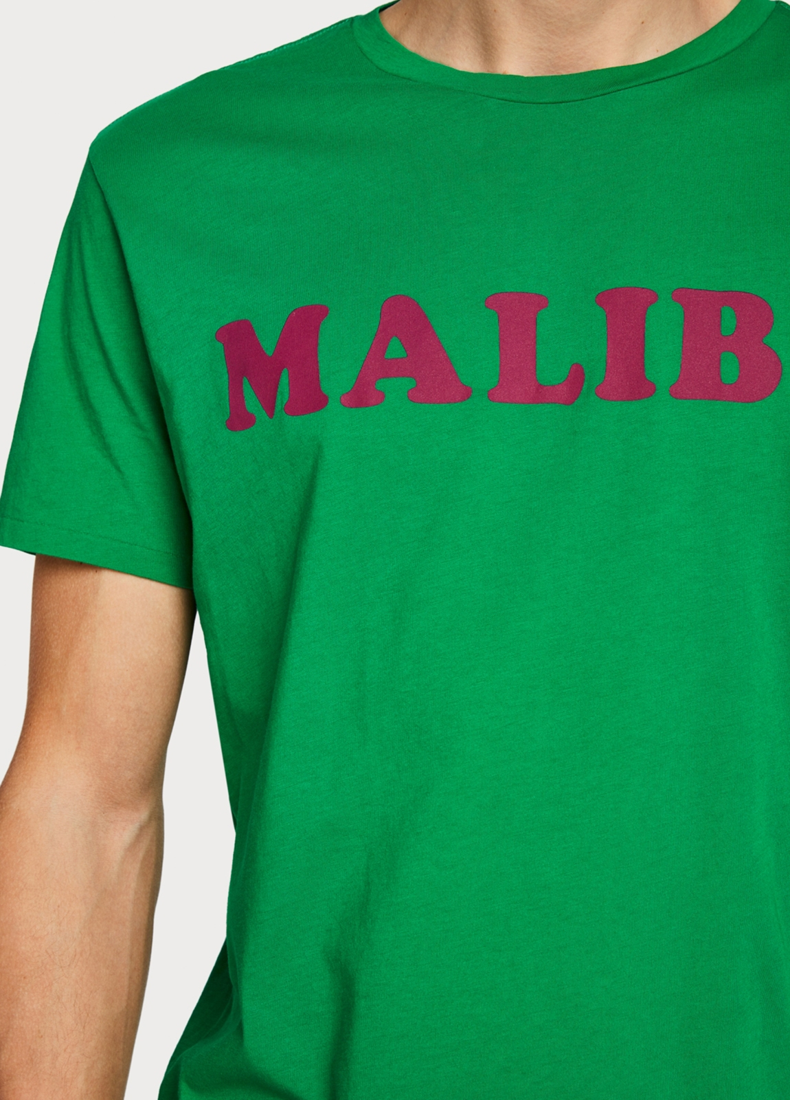 Camiseta SCOTCH & SODA verde - Ítem2