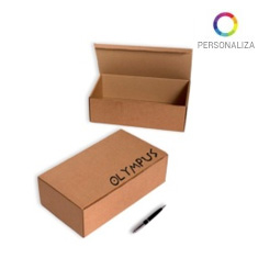 Cajas Impresas 340x195x105mm