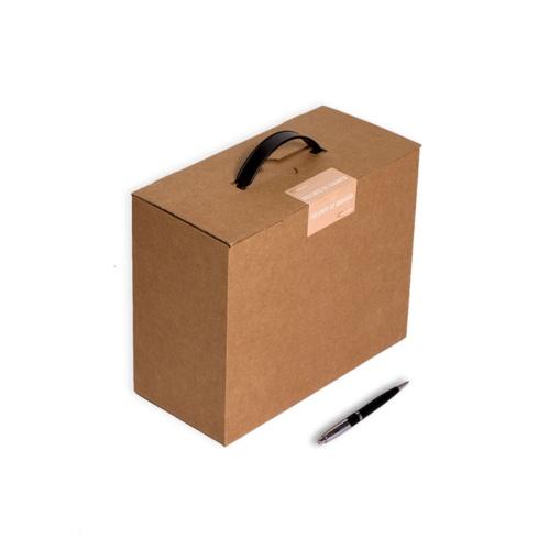 Envío de Muestras (2Unidades) Caja Maletín Asa Plástico