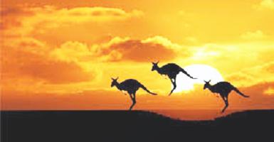 Desodorisant Voiture Continents Australia - Article1