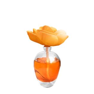 bouquet parfum d'ambiance Esoteria