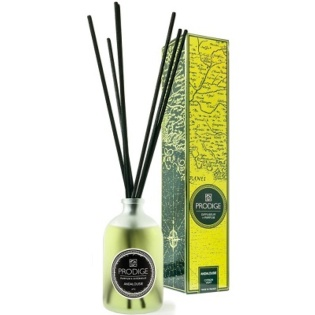 Home Fragrance Reed Diffuser Andalousie