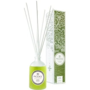 Home Fragrance Reed Diffuser Esprit Naure