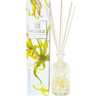 Home Fragrance Reed Diffuser Ylang