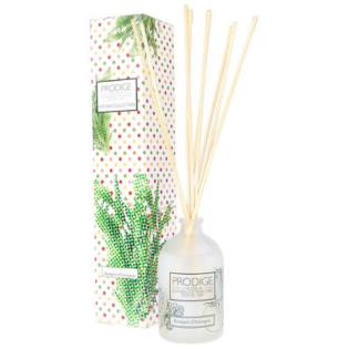 Parfum d'ambiance kitchen Bouquet d'Estragon