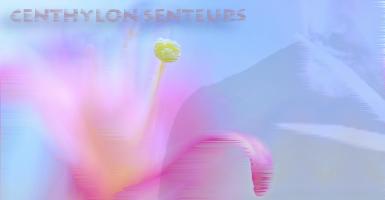 Parfum Fondant Senteurs Eau Zen - Article1