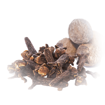 Home Fragrance Clove & Nutmeg Sample
