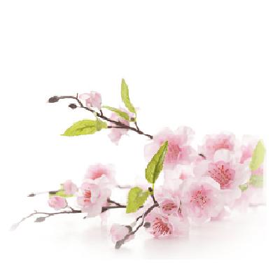 Parfum d'ambiance Floral échantillon 13ml.