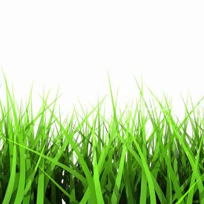 Ambientador Spray Hierba recién cortada