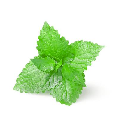 Parfum d'ambiance Spray Menthe Verte