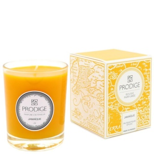 Scented Candle Jamaique
