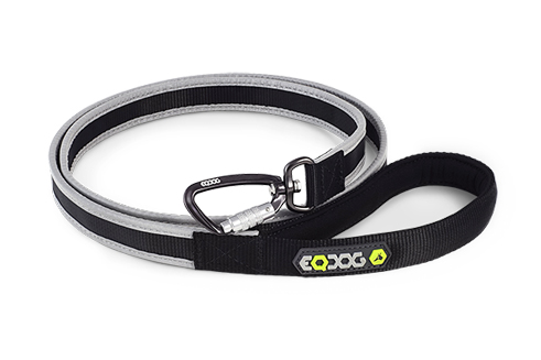 Correa Eqdog REFLECTIVE LEASH™