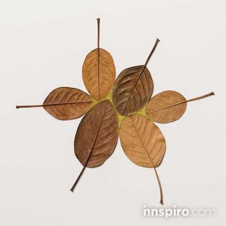 leaf-12
