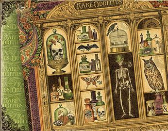 Colección RARE ODDITIES