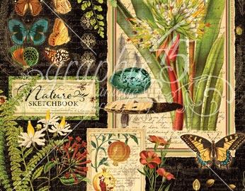 Colección NATURE SKETCHBOOK