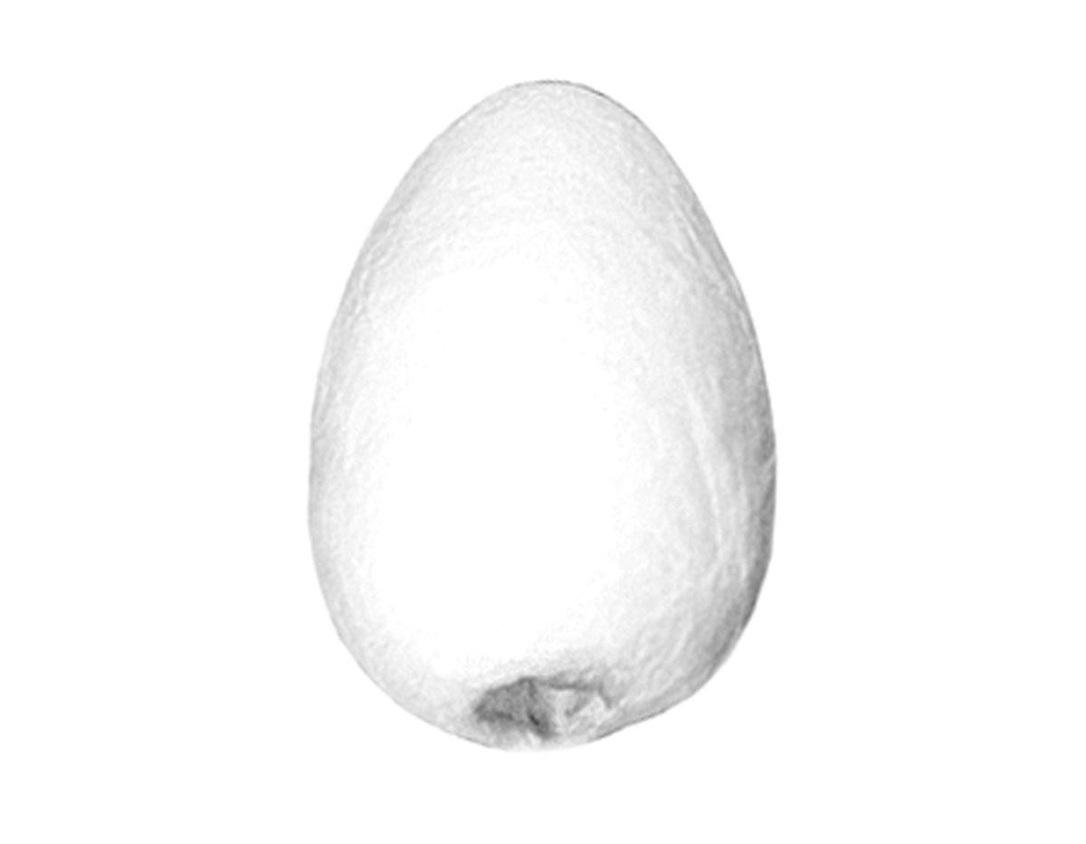 103220 103221 103222 103223 103224 Huevos celulosa con agujero ciego Innspiro