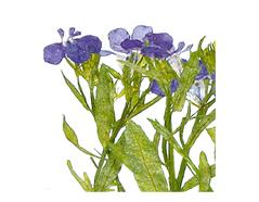 1945 Flor seca prensada loberia with stem azul Innspiro