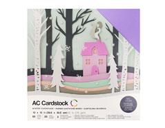 376983 Set 60 cartulinas Winter Variety Pack American Crafts