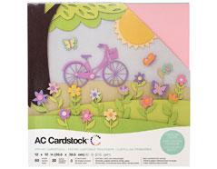 376993 Set 60 cartulinas Spring Variety Pack American Crafts