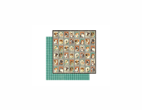 4500962 Papel doble cara RAINING CATS AND DOGS Graphic45