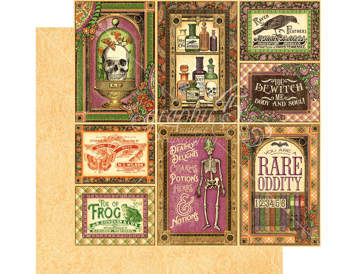 4501149 Papel doble cara RARE ODDITIES Cabinet of Curiosities Graphic45