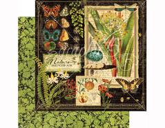 4501471 Papel doble cara NATURE SKETCHBOOK Nature Sketchbook Graphic45