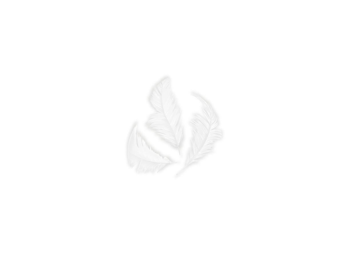 97321 Plumon blanco Innspiro