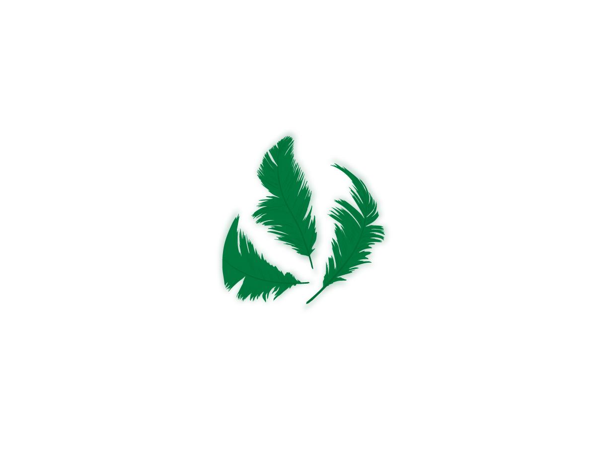 97324 Plumon verde Innspiro