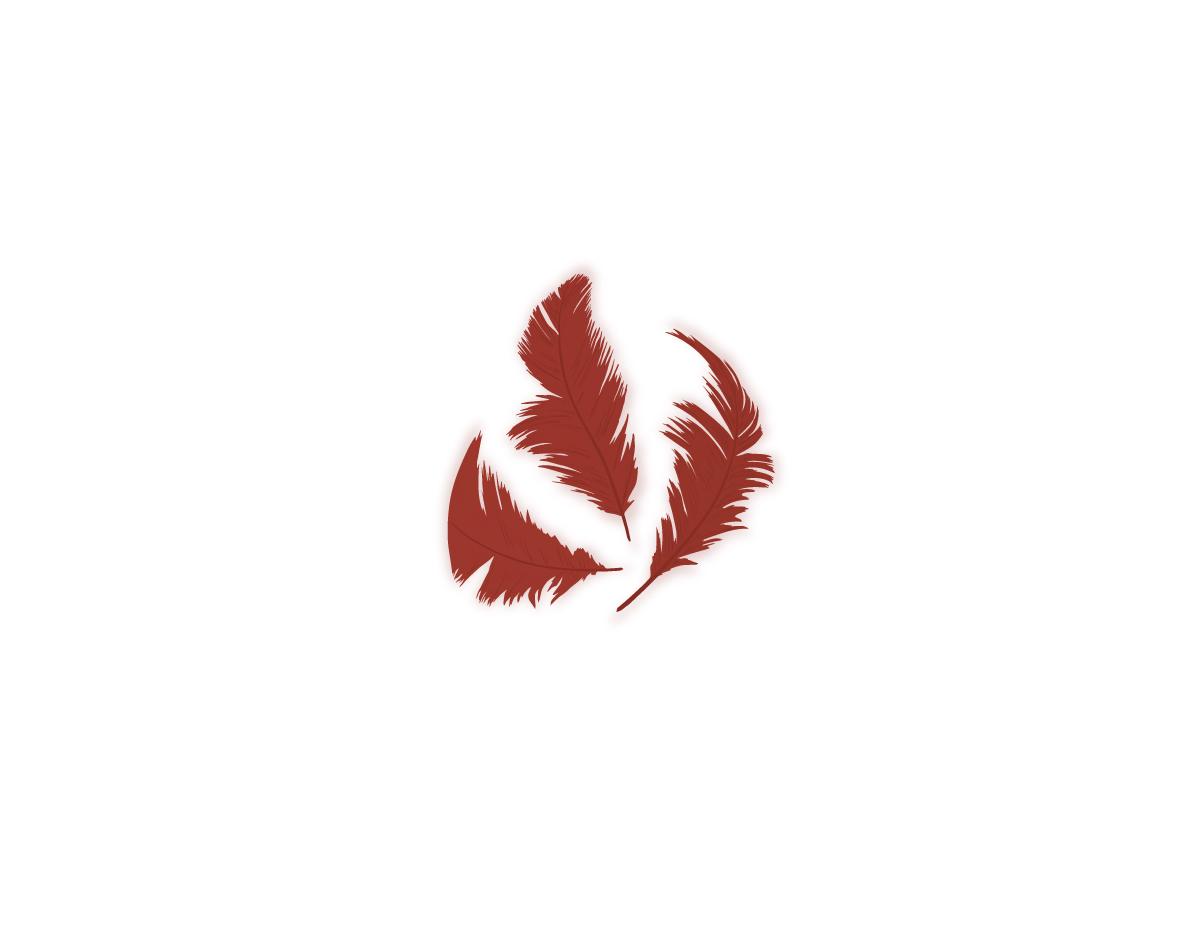 97325 Plumon rojo Innspiro