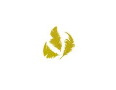97326 Plumon amarillo Innspiro