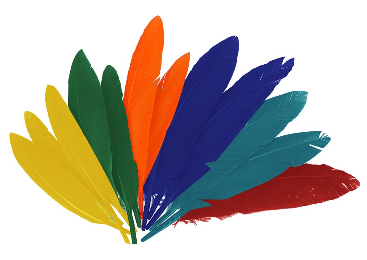 97330 Plumas indio mix colores Innspiro