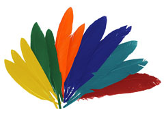 97330 Plumas indio mix colores Innspiro