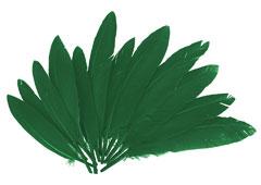97334 Plumas indio verde Innspiro