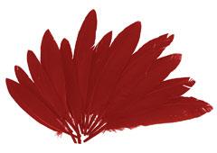 97335 Plumas indio rojo Innspiro