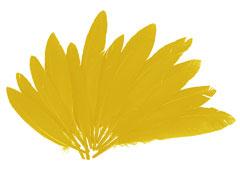 97336 Plumas indio amarillo Innspiro