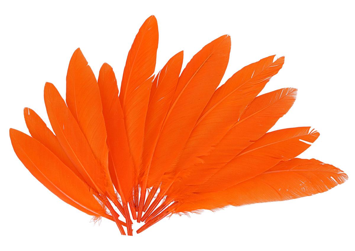 97337 Plumas indio naranja Innspiro