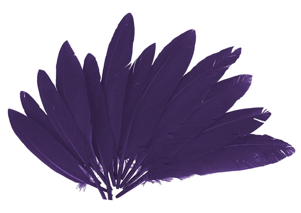 97338 Plumas indio lila Innspiro
