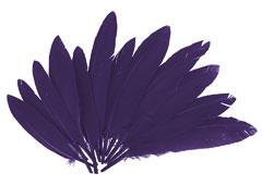 97338 Plumas indio lila Innspiro - Ítem