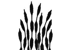99062 Limpiapipas chenilla formas negro Innspiro